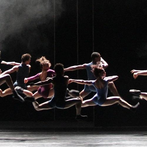 NSCD students secure work with Black Box Dance Company