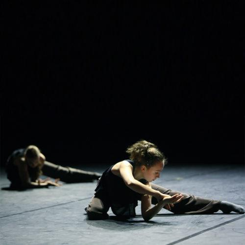 Palucca University of Dance Dresden | Meet the Artist